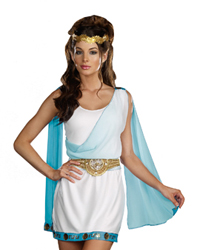 dreamgirl its chic to be greek costume