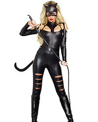 dreamgirl sexy cat fight costume